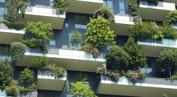 Tendências em 2020: Acessibilidade e Sustentabilidade para os estabelecimentos